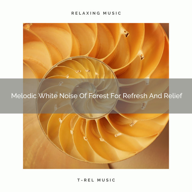 2020 Best: Melodic White Noise Of Forest For Refresh And Relief