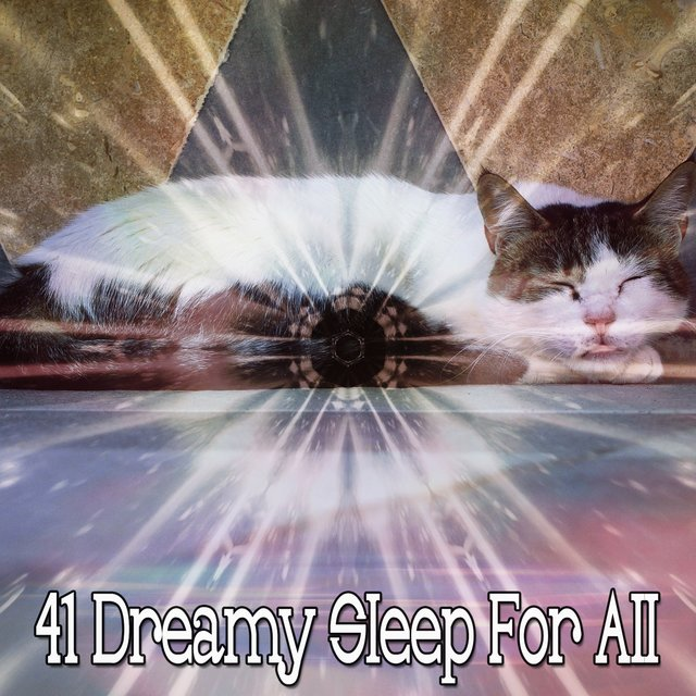 41 Dreamy Sleep for All