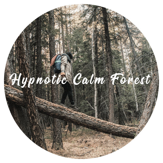 Hypnotic Calm Forest - Serenity Mind, Stop Feeling Anxiety, Soft Sounds of Nature, Body & Mind Relax Music