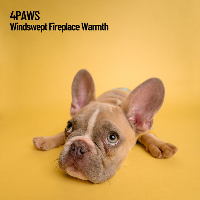 4Paws: Windswept Fireplace Warmth