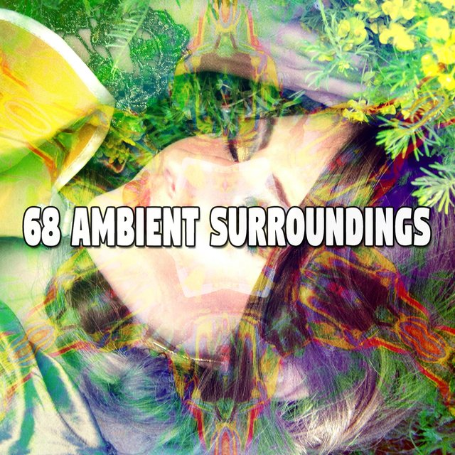 68 Ambient Surroundings