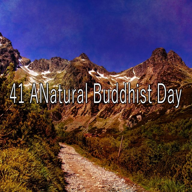 41 Anatural Buddhist Day