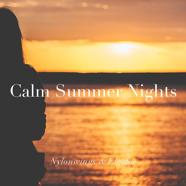 Calm Summer Nights
