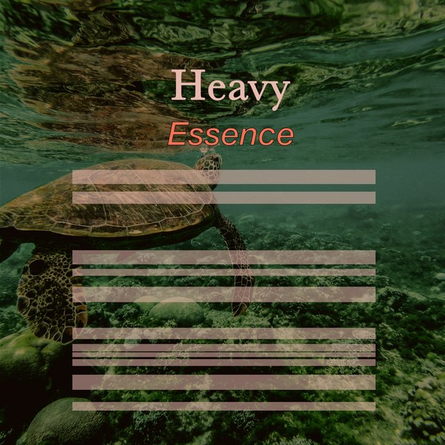 # 1 Album: Heavy Essence