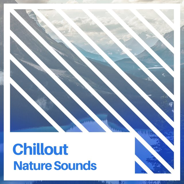 Chillout Nature Sounds, Vol. 1