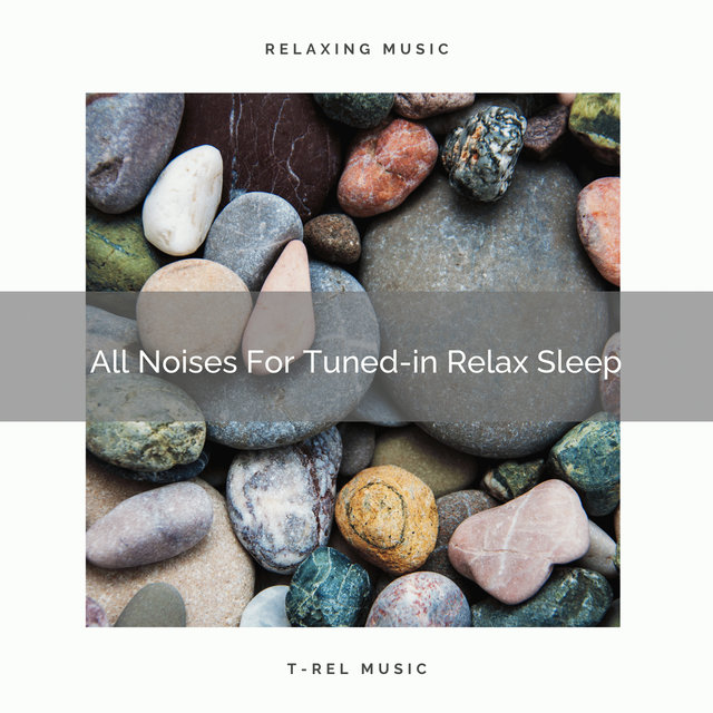 All Noises For Tuned-in Relax Sleep