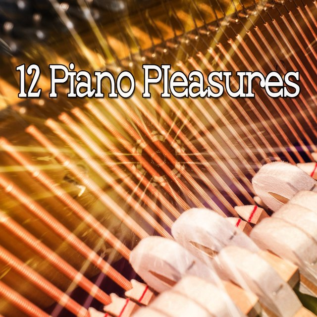 12 Piano Pleasures