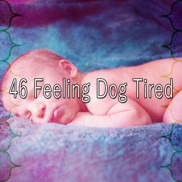 46 Feeling Dog Tired