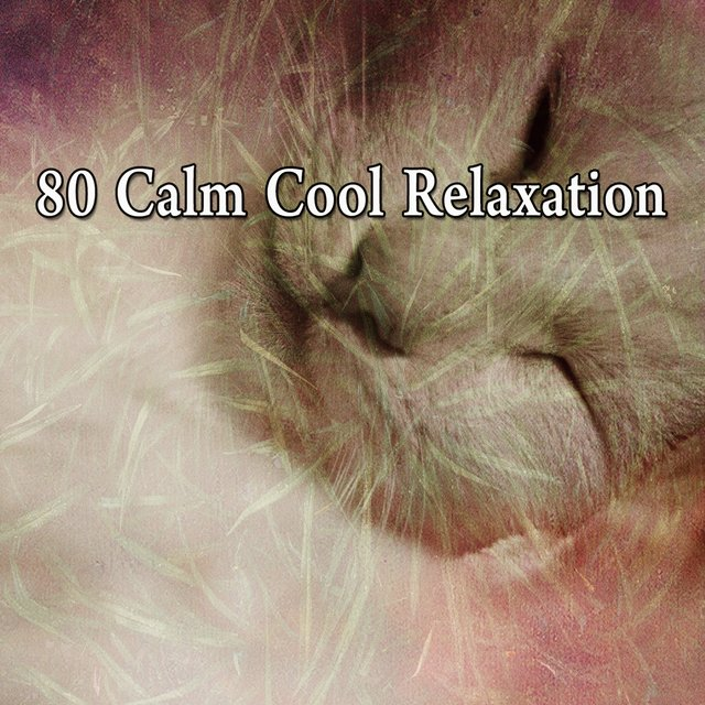 80 Calm Cool Relaxation