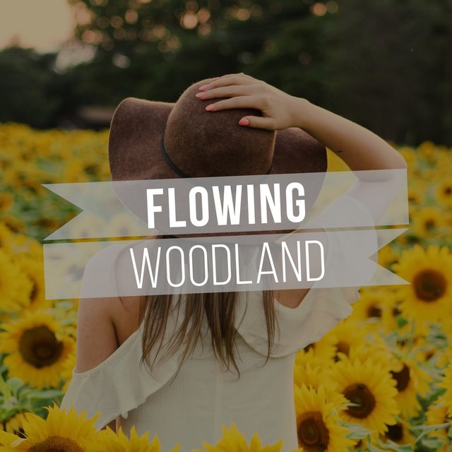 # Flowing Woodland