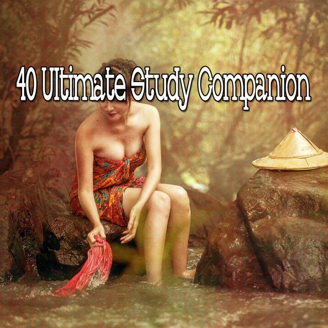 40 Ultimate Study Companion