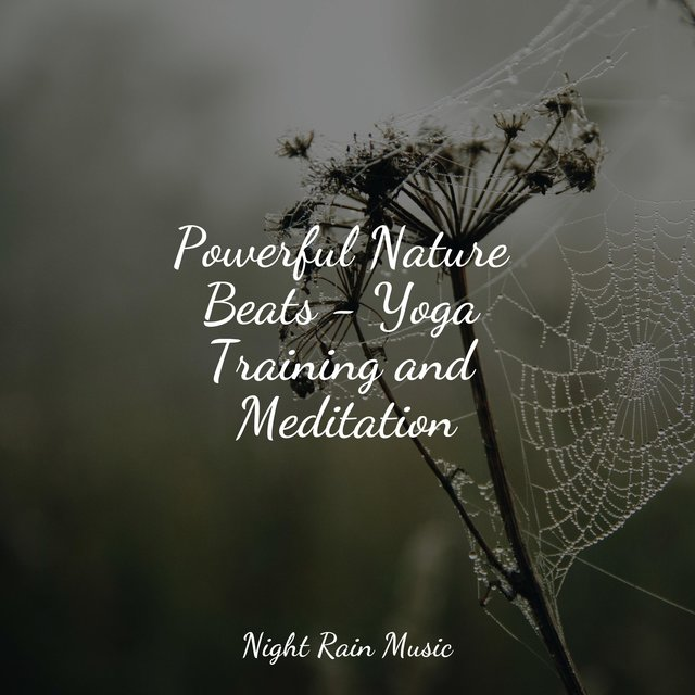 Powerful Nature Beats - Yoga Training and Meditation