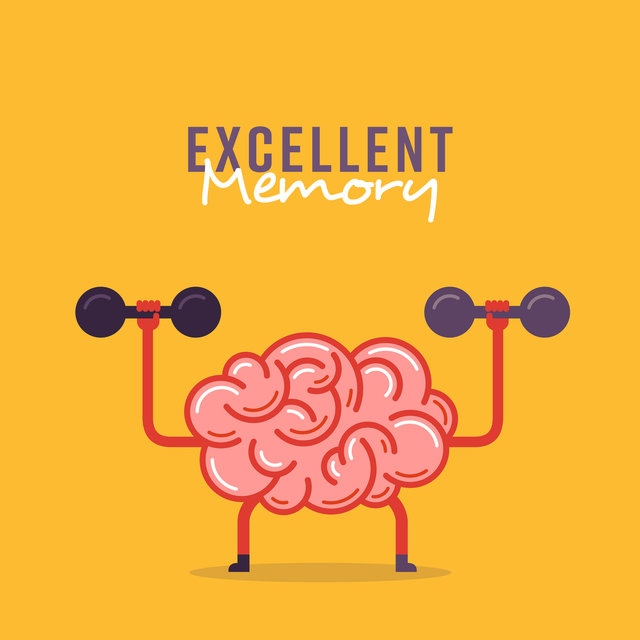 Excellent Memory: Music for Study and Concentration, Quiet and Calm Melodies for Easy Remembering and Learning