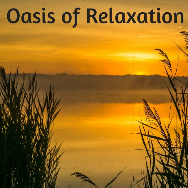 Oasis of Relaxation - Ambient Sleep Music, 50 Relaxing Zen Antistress Songs for Massage