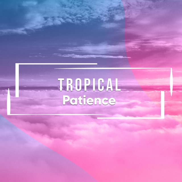 # 1 Album: Tropical Patience