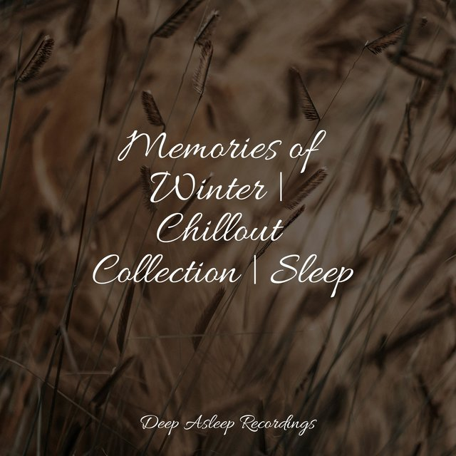 Memories of Winter | Chillout Collection | Sleep