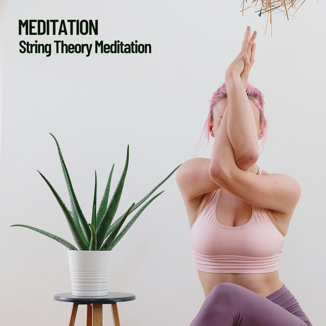 Meditation: String Theory Meditation