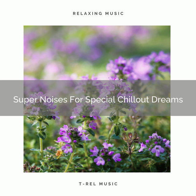 Super Noises For Special Chillout Dreams