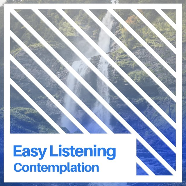 # 1 Album: Easy Listening Contemplation