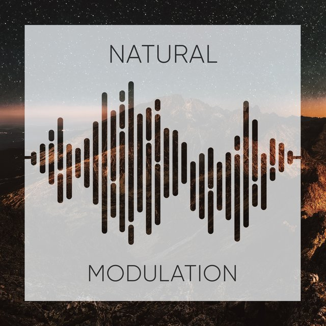 # 1 Album: Natural Modulation
