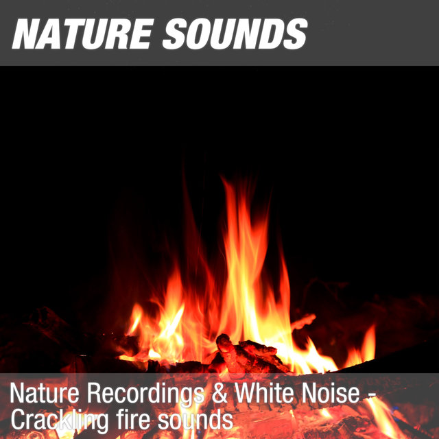 Nature Recordings & White Noise - Crackling fire sounds