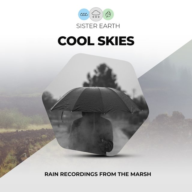 Cool Skies: Rain Recordings from the Marsh