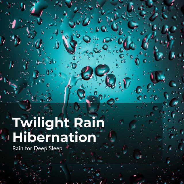 Twilight Rain Hibernation