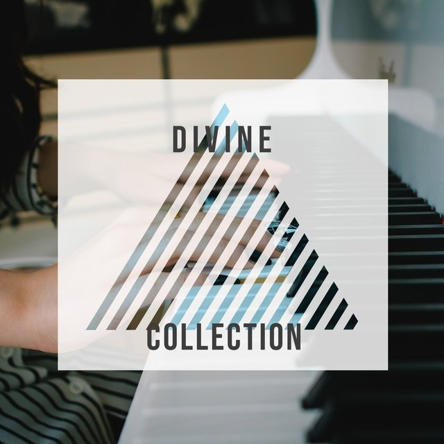 # Divine Collection