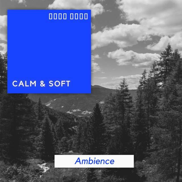 Calm & Soft Ambience