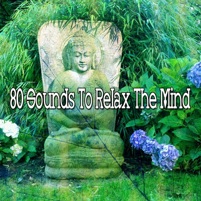 80 Sounds to Relax the Mind