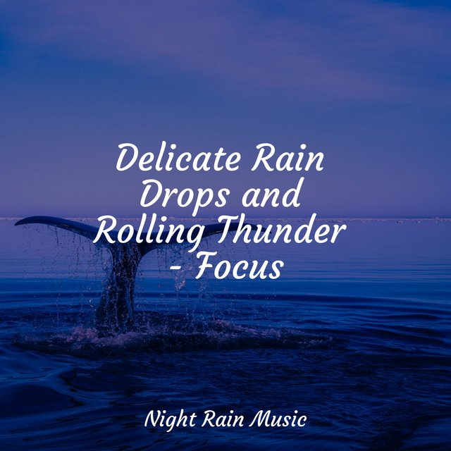 Delicate Rain Drops and Rolling Thunder - Focus