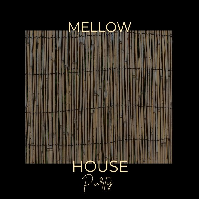 Mellow House Party