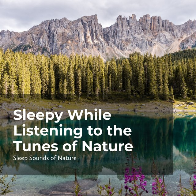 Sleepy While Listening to the Tunes of Nature