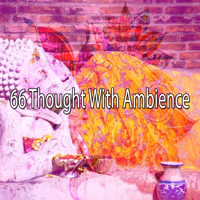 66 Thought with Ambience
