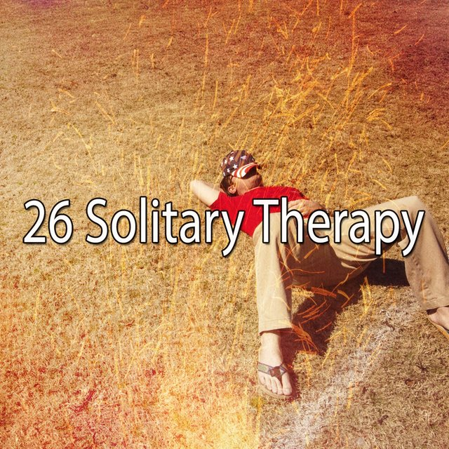 26 Solitary Therapy