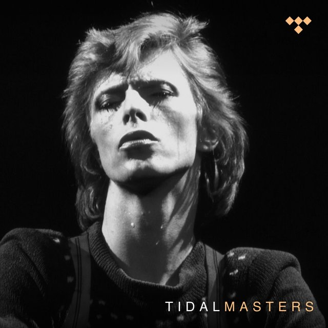 David Bowie - TIDAL Masters