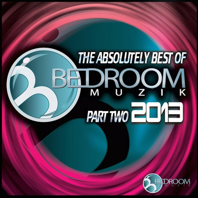 The Absolutely Best Of Bedroom Muzik 2013 Pt. 2