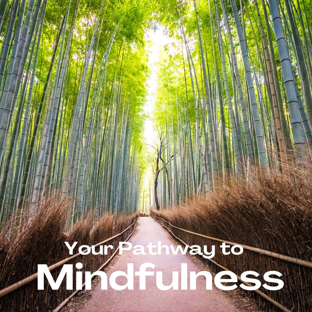Your Pathway to Mindfulness (Soft Meditation Music, Attain Harmony, Instrumental Calmness, Nature)