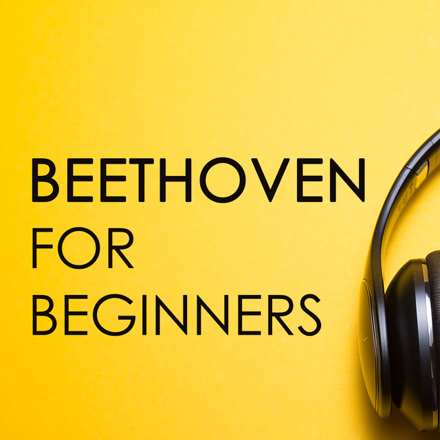 Beethoven for beginners