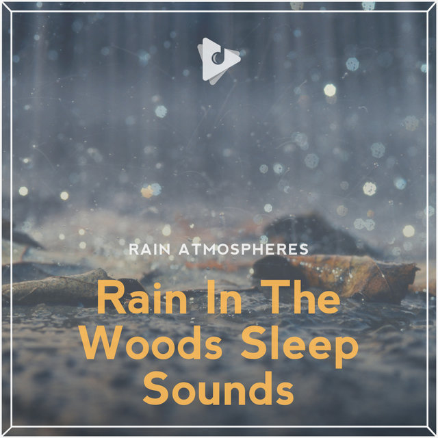 Rain In The Woods Sleep Sounds