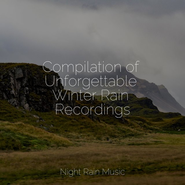 Compilation of Unforgettable Winter Rain Recordings