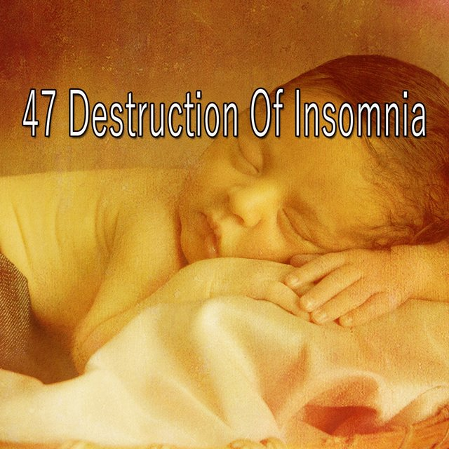 47 Destruction of Insomnia