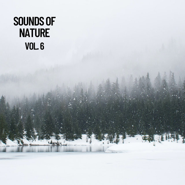 Sounds of Nature Vol. 6, Sounds of Nature Noise
