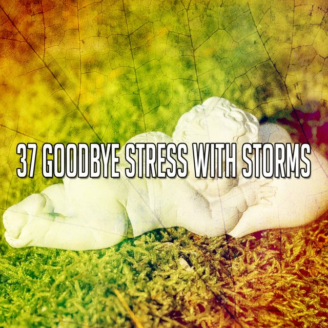 37 Goodbye Stress with Storms