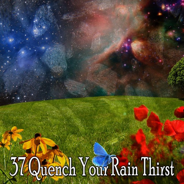 37 Quench Your Rain Thirst