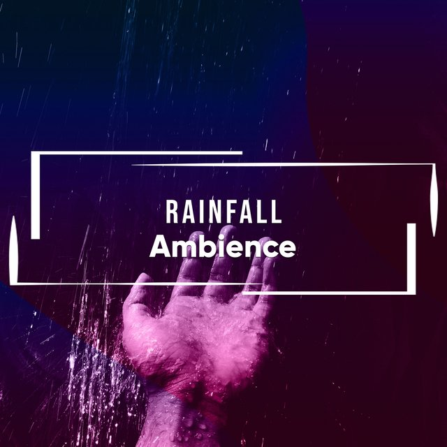 Relaxing Rainfall Relief Ambience