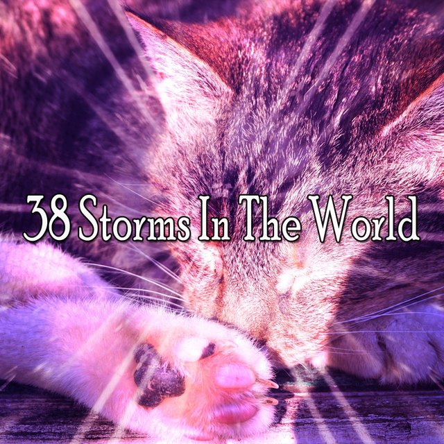 38 Storms in the World