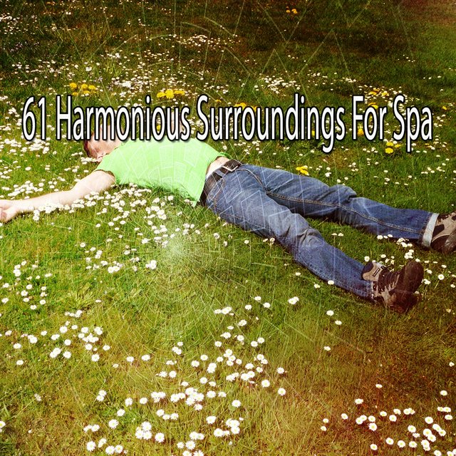 61 Harmonious Surroundings for Spa