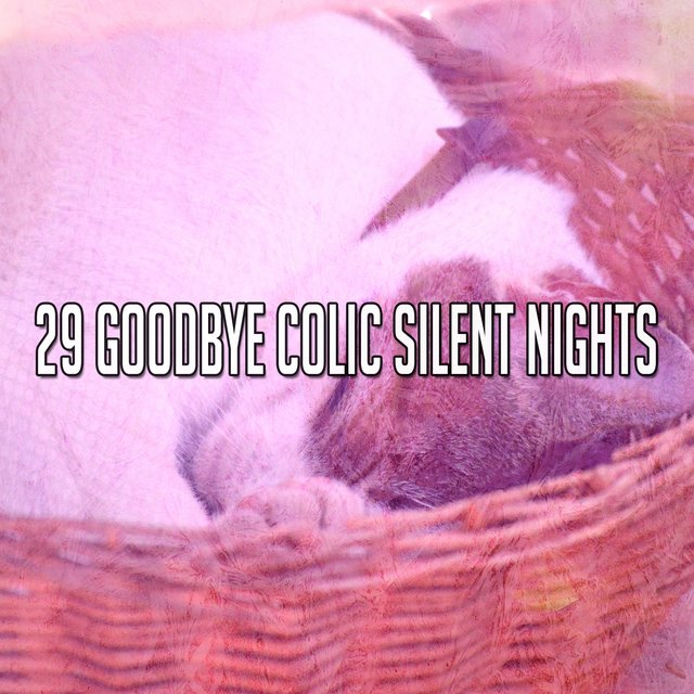 29 Goodbye Colic Silent Nights