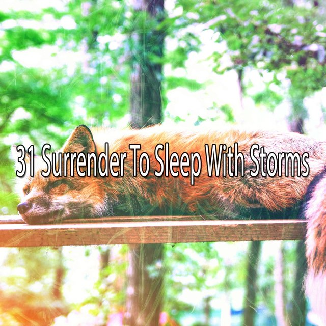 31 Surrender to Sleep with Storms